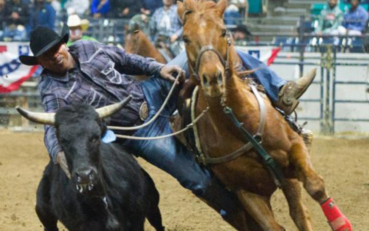 bill-picket-rodeo-gdn-1440x564_c