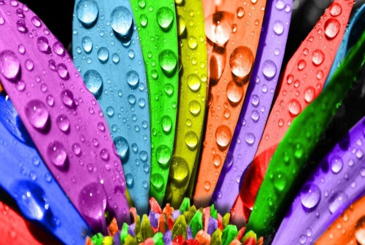 روانشناسی رنگ ها؛ شخصیت شما چه رنگی است؟