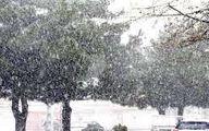 پیش بینی بارش برف و باران برای این هفته