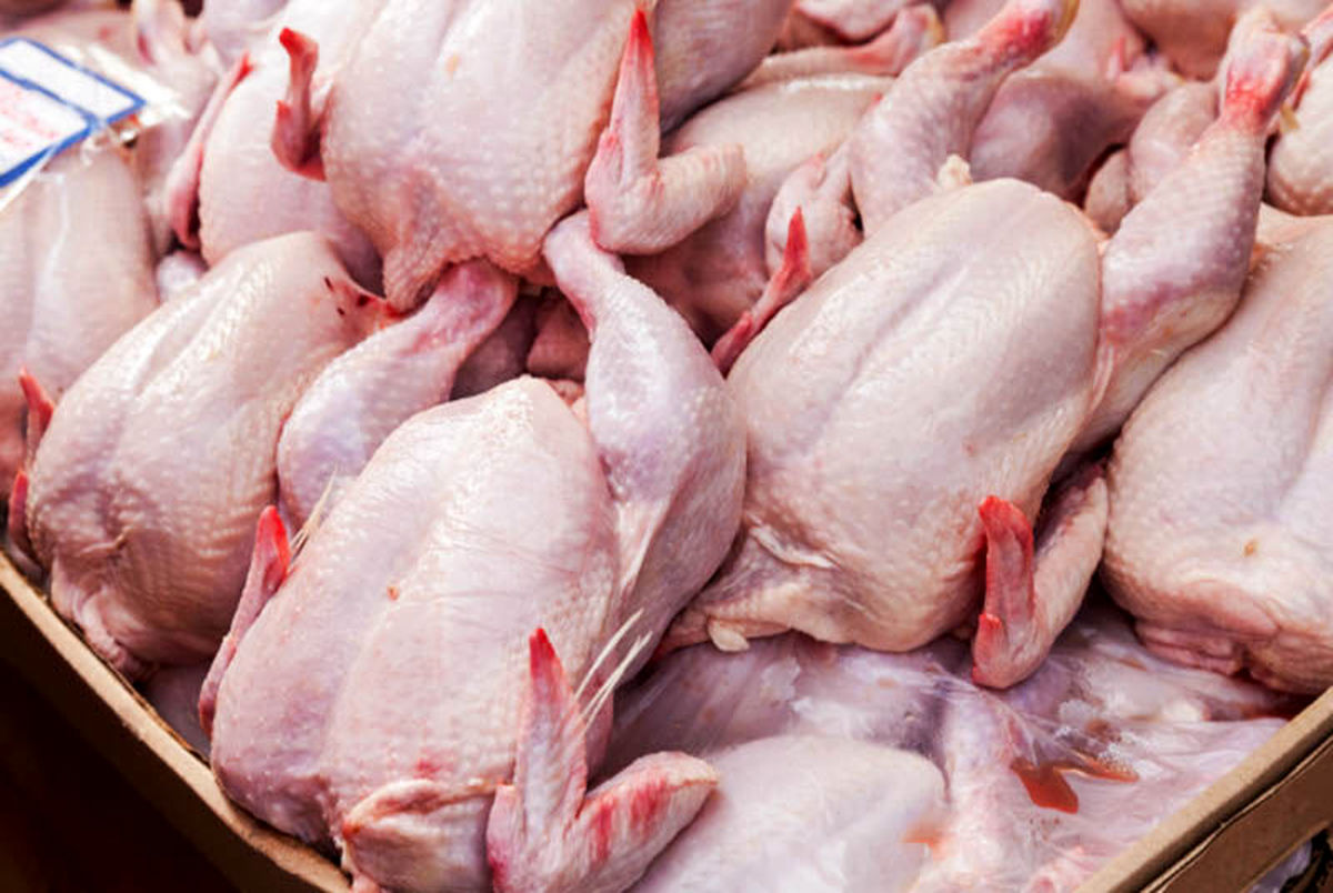 قیمت مرغ گرم امروز سه شنبه 10 فروردین 1400